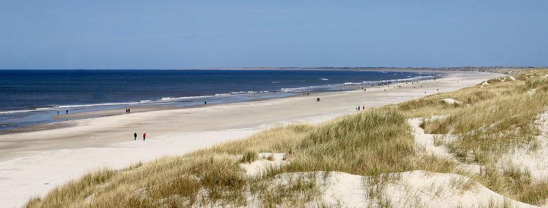 Henne Strand Panorama